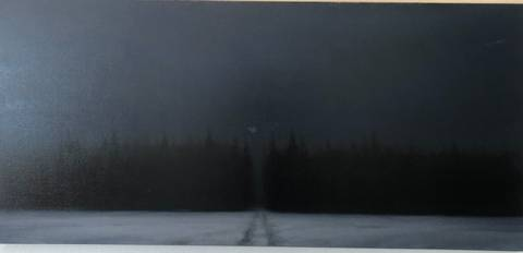 Bilde av Granskogen av Christopher Rådlund