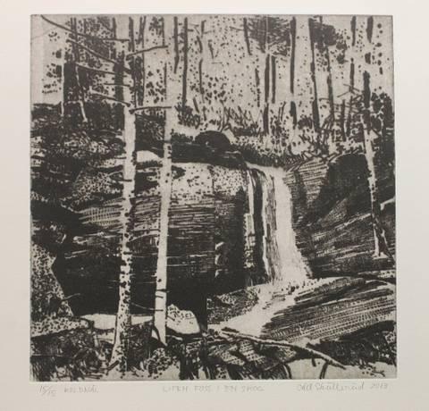 Bilde av Liten foss i en skog av Odd Skullerud
