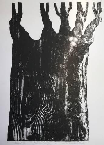 Bilde av Drømmen om Vinger II av Trine Lindheim